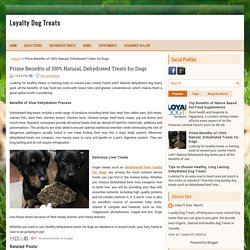 Prime Benefits of 100% Natural, Dehydrated Treats for Dogs ~ Loyalty Dog Treats