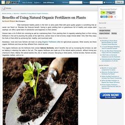 Benefits of Using Natural Organic Fertilizers on Plants by Kwak Minjun