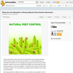 What Are the Benefits of Hiring Natural Pest Control Services? - All