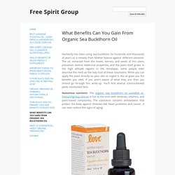 What Benefits Can You Gain From Organic Sea Buckthorn Oil