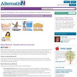 Black Mustard – Benefits and Uses Overview - AlternativZ