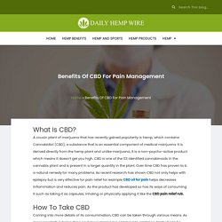 Benefits Of CBD For Pain Management - Daily Hemp Wire