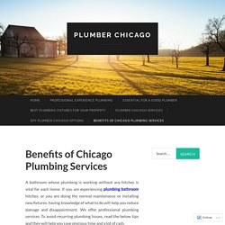 Benefits of Chicago Plumbing Services