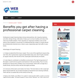 Benefits you get after having a professional carpet cleaning