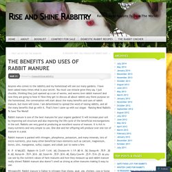 THE BENEFITS AND USES OF RABBIT MANURE