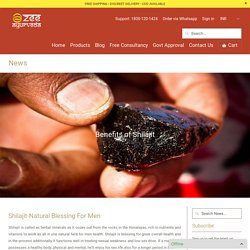 Benefits of Shilajit - Zee Ayurveda