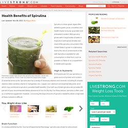 Spirulina Benefits With Mercury
