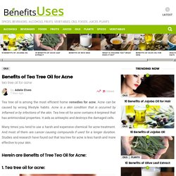 Benefits of Tea Tree Oil for Acne