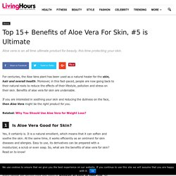 Awesome 15+ Benefits Of Using Aloe Vera For Skin and More...