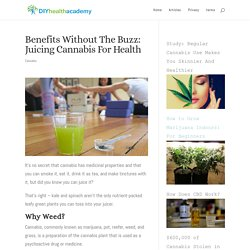 Benefits Without The Buzz: Juicing Cannabis For Health