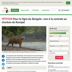 Pour le tigre du Bengale: non à la centrale au charbon de Rampal