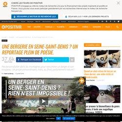 Une bergerie en Seine-Saint-Denis ? Un reportage plein de poésie.