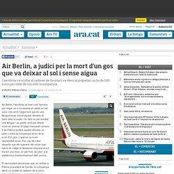 Air Berlin, a judici per la mort d'un gos que va deixar al sol i sense aigua