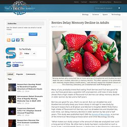 Berries Delay Memory Decline in Adults
