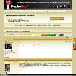 besoin de conseils -> plan de coca indoor / PsychoACTIF