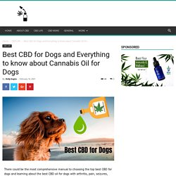 Best CBD for Dogs: CBD for Arthritis, Cancer, and CBD Dosage for Dogs