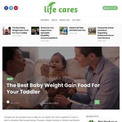 The Best Baby Weight Gain Food For Your Toddler