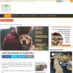 Best Dog Breeds for Single Men