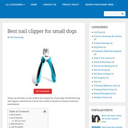 Best Nail Clipper For Small Dogs