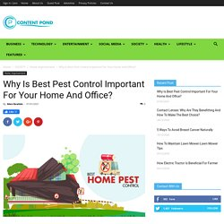 Why Is Best Pest Control Important For Your Home And Office?