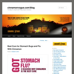Best Cure for Stomach Bugs and Flu with Cinnamoncinnamonvogue.com/blog