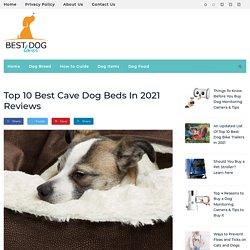 10 Best Dog Cave Beds