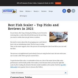 Best Fish Scaler – Top Picks and Reviews in 2021