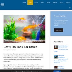 Best Fish Tank For Office - 2021
