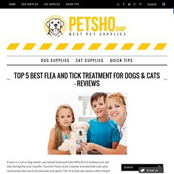 Top 5 Best Flea and Tick Treatment for Dogs & Cats – Reviews