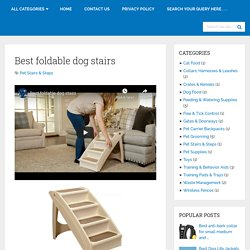 Best Foldable Dog Stairs