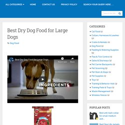 Best Dry Dog Food For Large Dogs