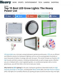 Top 10 Best LED Grow Lights: The Heavy Power List