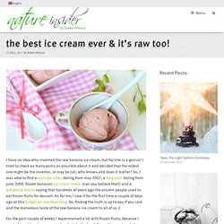 the best ice cream ever & it's raw too! | NatureInsider.com