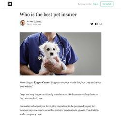 Who is the best pet insurer - Bill Berg - Medium
