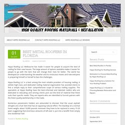 Best Metal Roofers In Florida