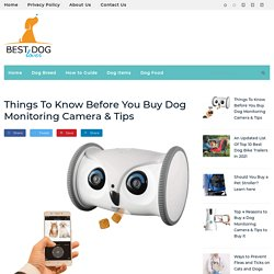 Buy Best Dog Monitoring Camera - Your Dog Lover