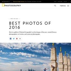 Best Photographs of 2016