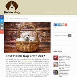 Best Plastic Dog Crates
