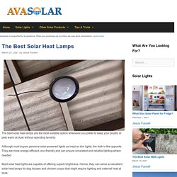 The 10 Best Solar Heat Lamp Reviews of 2021 - Avasolar