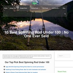 10 Best Spinning Rod Under 100