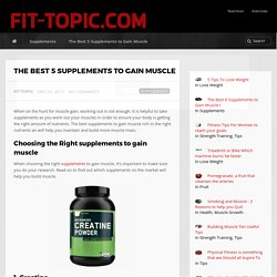 The Best 5 Supplements to Gain Muscle