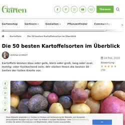 Das sind die 50 besten Kartoffelsorten - Mein schöner Garten