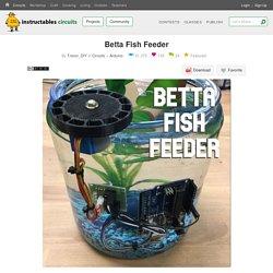 Betta Fish Feeder: 6 Steps