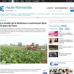 La récolte de la betterave a commencé dans le pays de Caux - France 3 Haute-Normandie