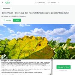 15 déc. 2020 Betteraves : le retour des néonicotinoïdes acté au Journal officiel