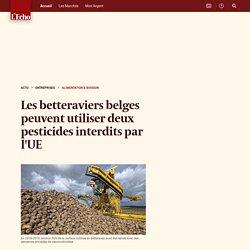 LECHO_BE 26/02/20 Les betteraviers belges peuvent utiliser deux pesticides interdits par l'UE