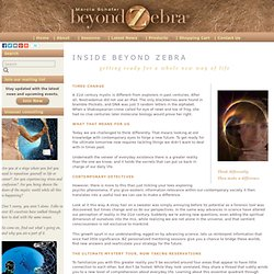 Beyond Zebra