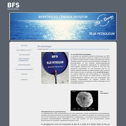 BFS bio fuel systems