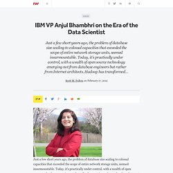 IBM VP Anjul Bhambhri on the Era of the Data Scientist