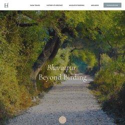 Bharatpur beyond Birding